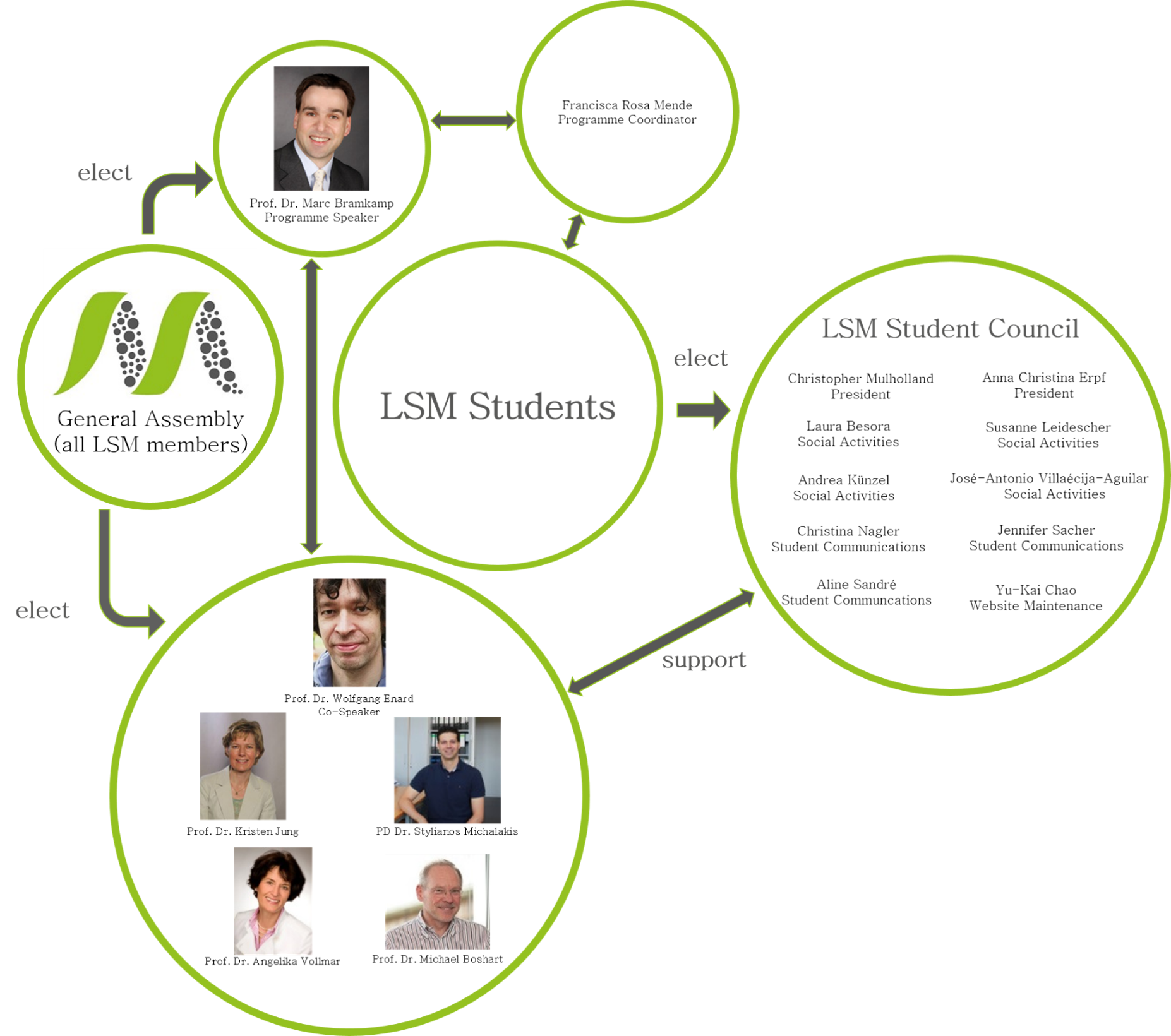 lsm web of communication